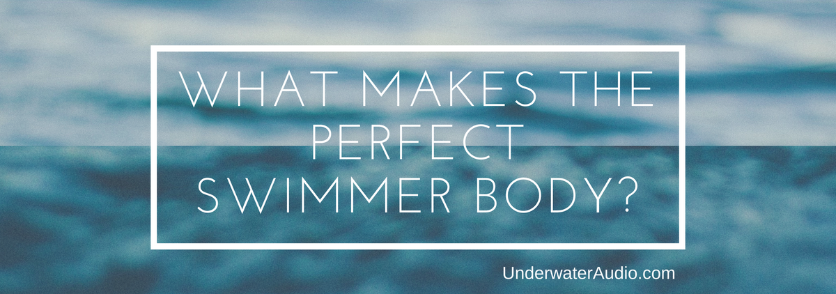 What Makes the Perfect Swimmer Body?
