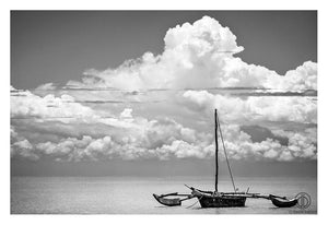 KWALE ISLAND OF ZANZIBAR | By David Ballam