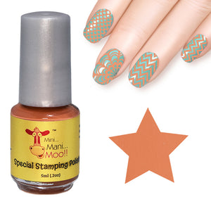 Nail art polish 5 ml SALMON