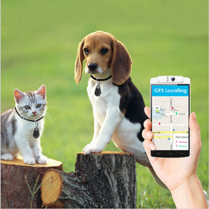 SafePET Bluetooth GPS Anti-Lost Smart Tracker
