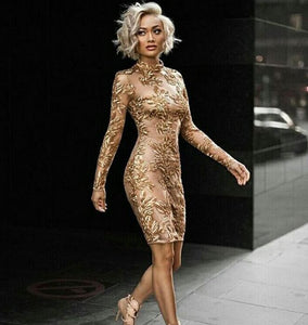High Quality Luxury Fashion Gold Nude Mesh Long Sleeve Sequin Dress - ICU SEXY