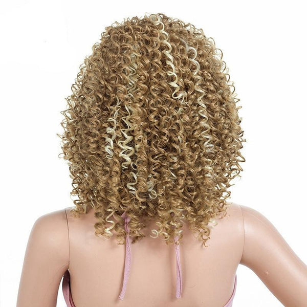 Natural Blonde Highlighted Spiral Curl Front Lace Lace Wig - ICU SEXY