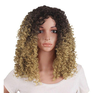 Women's Natural Curly Heat Resistant Front Wig in 2 Shades - icu-sexy
