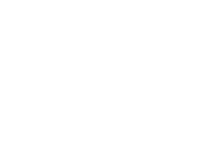 The Ballet Experience