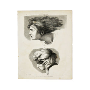 "Drawing (Hair)  Antique 1820 Engraving from ""The Modern Encyclopedia: The Latest Discoveries in each Department of Knowledge.""  1820s etching of two hairstyles for drawing purposes.  Measures 10.5 x 8.25 inches."