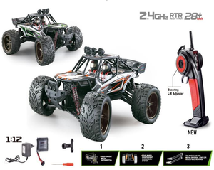 Tornado RC 2.4G 1:12 2WD high speed full-scale truck