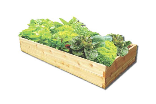 Vegetable Planter Kit