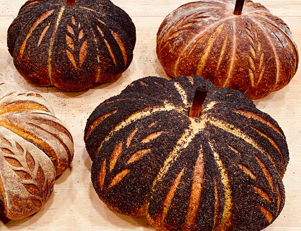 Poppy Crusted Sourdough Pumpkin