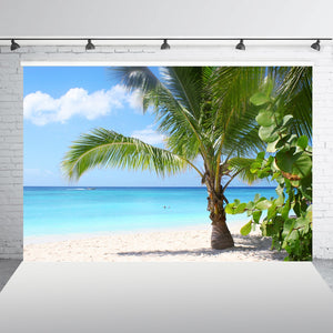Beautiful Beach and Blue Sky Photo Scene. FREE SHIPPING!