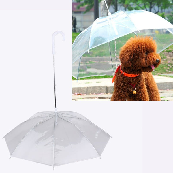 Transparent Pet Umbrella with Leash - Kitty Puppies