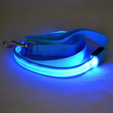 Premium Quality LED Dog Leash-Makes Your Dog Visible, Safe & Seen - Kitty Puppies