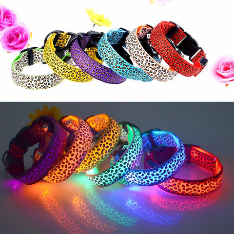 Dog Leopard LED Flashing Collar - Kitty Puppies