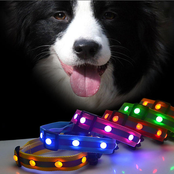 Adjustment LED Pet Night Safety Visible Collar - Kitty Puppies