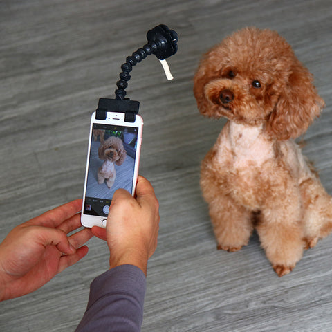 Smartphone Treat Holder Selfie Stick for Pets - Kitty Puppies