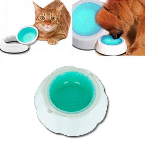 Best-Selling Cold Water Bowl for Dog/Cat - Kitty Puppies