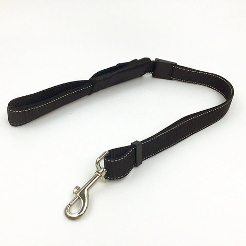 Buckle Hide Away 2-in-1 Dog Leash with Car Seat Belt - Kitty Puppies