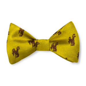 The Boys Bronc Bow Tie - Gold with Brown