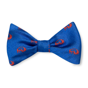Boys Buffalo Bow Tie - Blue with Orange