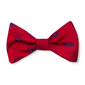 The Boys Buffalo Bow Tie - Red with Navy