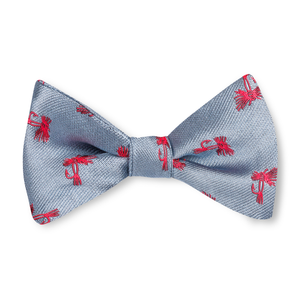 Boys Fly Tie Bow Tie - Blue with Red