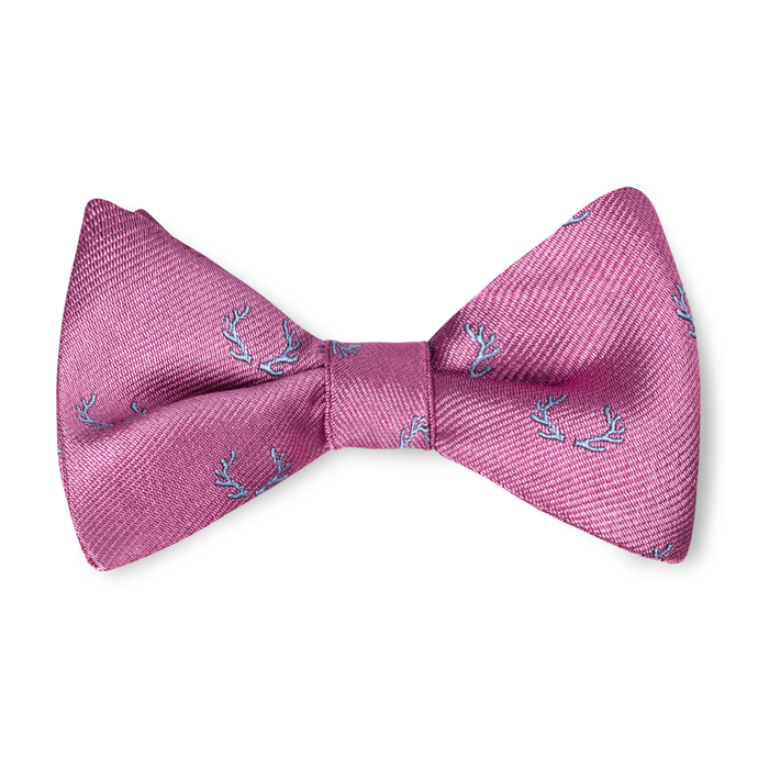 Boys Antler Bow Tie - Pink with Sky