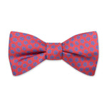 The Cornflower Bow Tie - Sunset