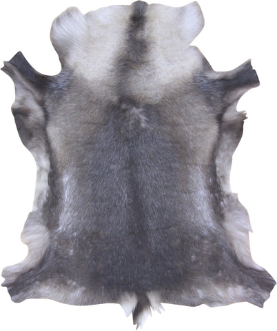 Premium Reindeer Hide- Medium (75cm x 115cm)