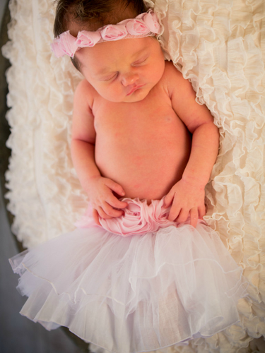 Ivory Tulle and Pink Rose Lace Tutu - lined with cotton silk