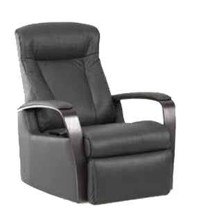 IMG Charlotte Leather Standard Multifunction Lift Chair