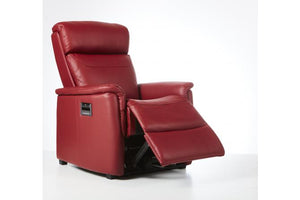 E-Z-Way Magnus Leather Electric Recliner