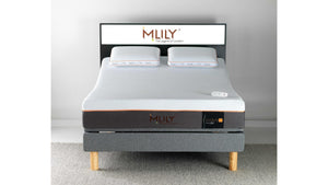 MLily Evolve Queen Firm Mattress Only