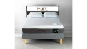 MLily Evolve Queen Medium Mattress Only