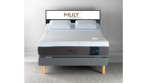 MLily Evolve Queen Plush Mattress Only