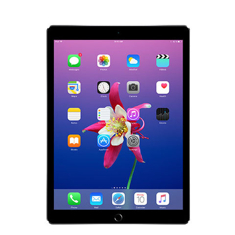"iPad Pro 10.5"" 2nd Gen 64GB WiFi + 4G LTE (Unlocked)"