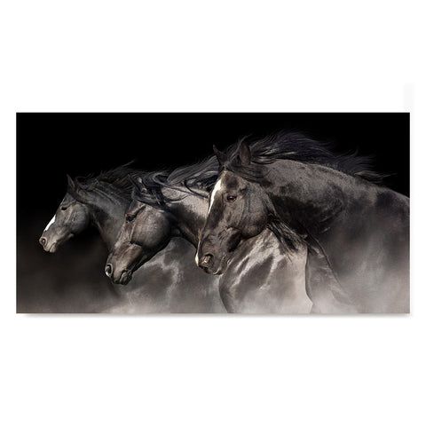 High quality 3 Blacks, Elegant Black White Red Sport Horses poster prints