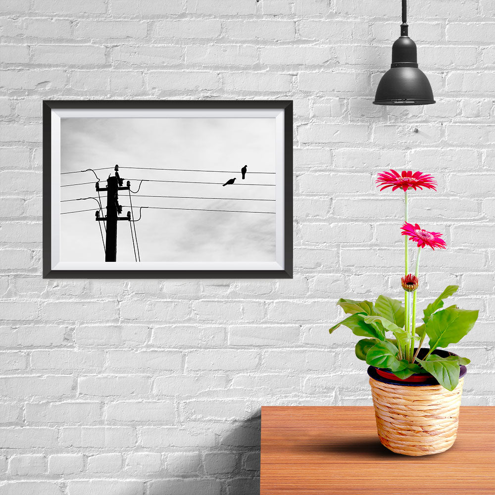 Ezposterprints - Birds On Wires - 12x08 ambiance display photo sample