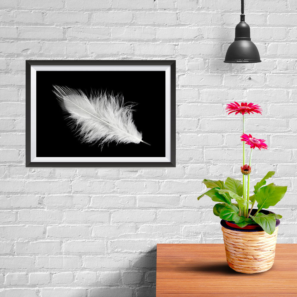 Ezposterprints - Feather - 12x08 ambiance display photo sample