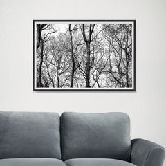 Ezposterprints - Leafless Trees - 24x16 ambiance display photo sample