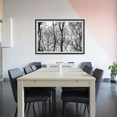 Ezposterprints - Leafless Trees - 48x32 ambiance display photo sample