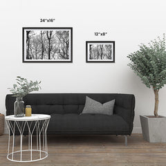 Ezposterprints - Leafless Trees ambiance display photo sample