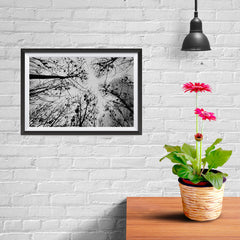 Ezposterprints - Looking Up - 12x08 ambiance display photo sample