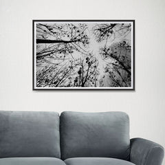 Ezposterprints - Looking Up - 24x16 ambiance display photo sample