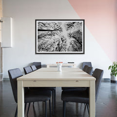Ezposterprints - Looking Up - 48x32 ambiance display photo sample