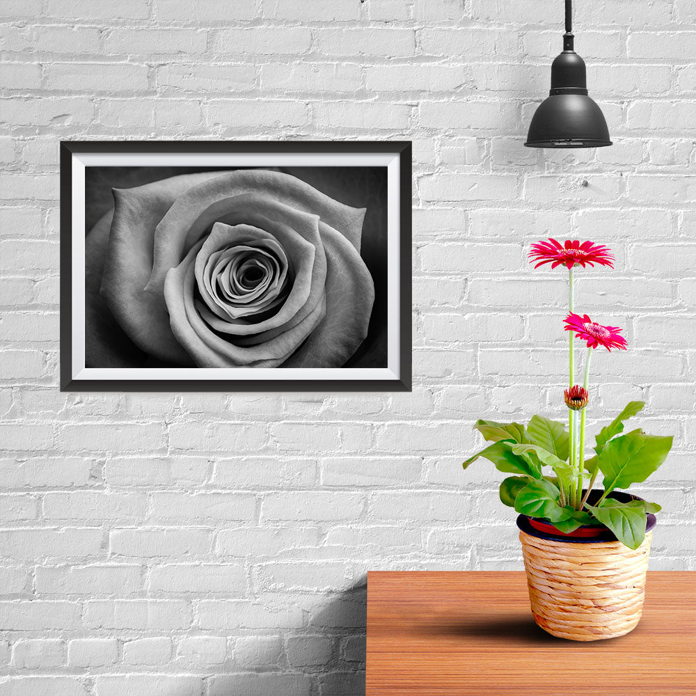 Ezposterprints - Rose - 12x08 ambiance display photo sample