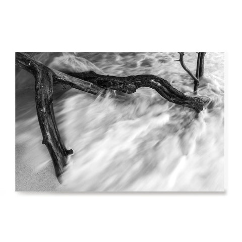 Ezposterprints - Wave Breaking Tree And Sand
