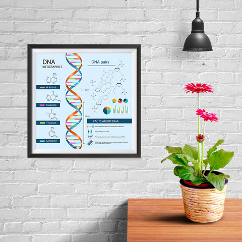 Ezposterprints - Facts About DNA Poster - 10x10 ambiance display photo sample