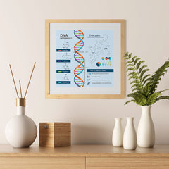 Ezposterprints - Facts About DNA Poster - 12x12 ambiance display photo sample