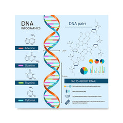 Ezposterprints - Facts About DNA Poster