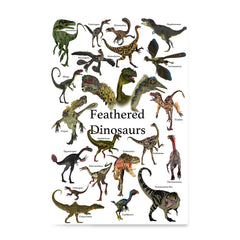 Ezposterprints - Feathered Dinosaurs - The World's Dinosaur Families Posters Collection