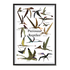Ezposterprints - Pterosaur Reptiles Dinosaurs - The World's Dinosaur Families Posters Collection ambiance display photo sample